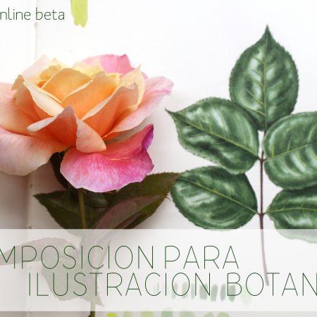 Curso Composición para Ilustración Botánica Mi Naturalismo Acuarela