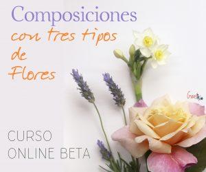 """Curso Online Beta: """"Composiciones con 3 tipos de flores"""" @ Mi Naturalismo - Escuela Online de Ilustración Botánica"""