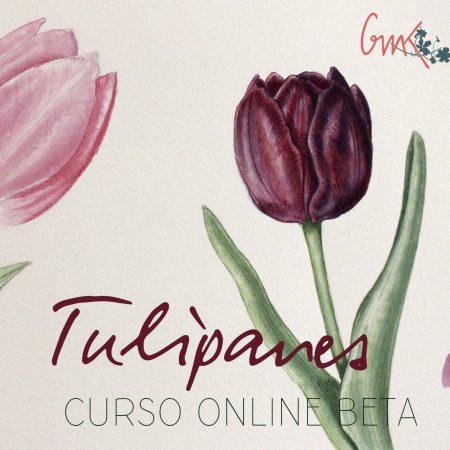 ilustración botánica tulipanes acuarela pintura taller curso Mi Naturalismo flor pintar