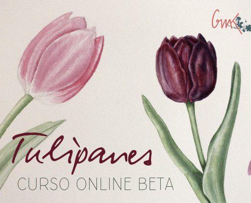 ilustración botánica acuarela tulipanes flores pintar color taller curso Mi Naturalismo