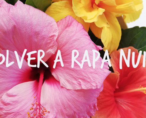 volver a Rapa Nui Geraldine MacKinnon Isla de Pasua Ilustración Botánica MNTV