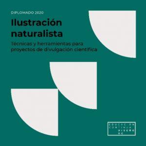 Diplomado Ilustración Naturalista Diseño UC @ Campus Lo Contador, Escuela de Diseño UC.